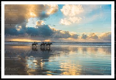 21 chevaux sur la plage de Berck