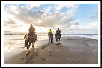 22 chevaux sur la plage de Berck