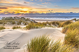 Les dunes de Berck